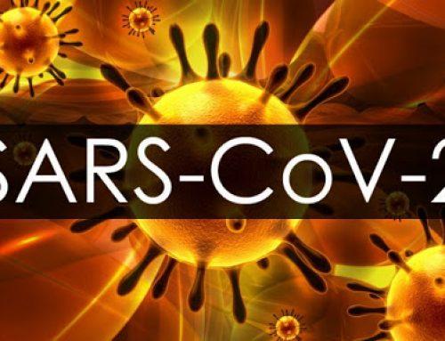 15 priložnosti, ki nam jih omogoča Korona virus (SARS-CoV-2)